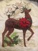 Winter Reindeer 2020 05 01